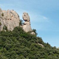 Un dinosaure a Montserrat